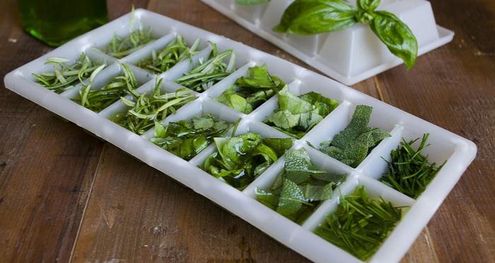 Come conservare le erbe aromatiche in freezer soluzioni di casa - Erbe aromatiche in casa ...