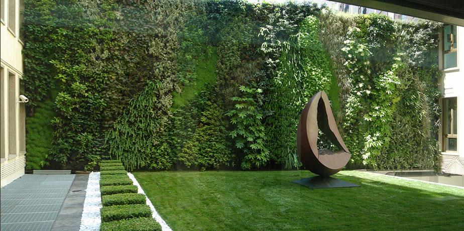 Pareti vegetali una moda green soluzioni di casa - Sughero pianta da giardino ...
