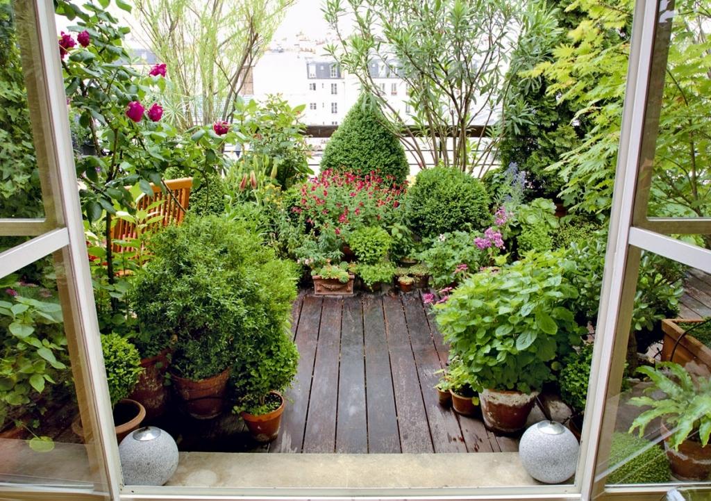 Mobili lavelli piante x balconi perenni for Giardino fiori