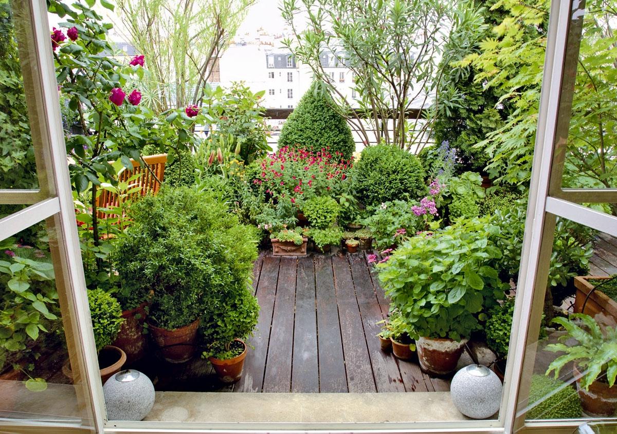 Piante perenni soluzione di casa - Giardino d inverno in terrazza ...