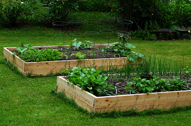 Molto Come creare un orto - Soluzioni di Casa AF02