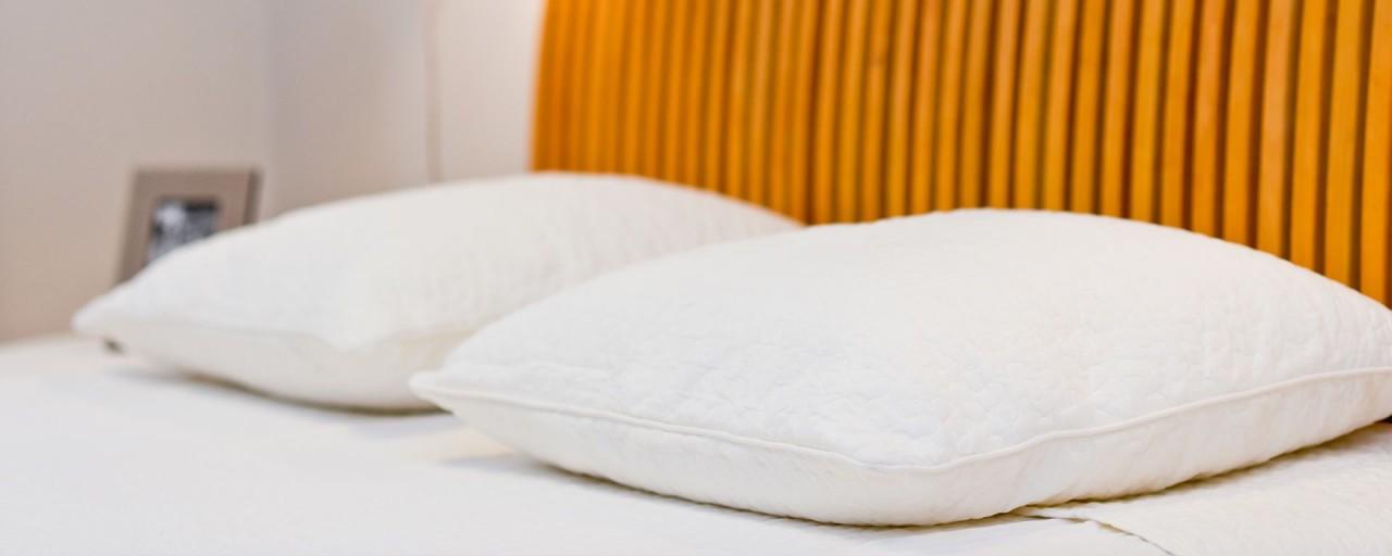 Come eliminare le cimici del letto soluzioni di casa - Eliminare le cimici da letto ...